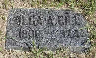 GILL, OLGA A. - Minnehaha County, South Dakota   OLGA A. GILL - South Dakota Gravestone Photos