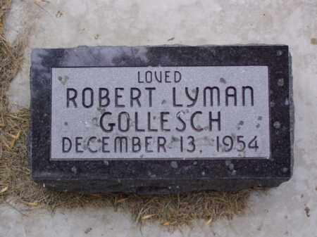 GOLLESCH, ROBERT LYMAN - Minnehaha County, South Dakota | ROBERT LYMAN GOLLESCH - South Dakota Gravestone Photos