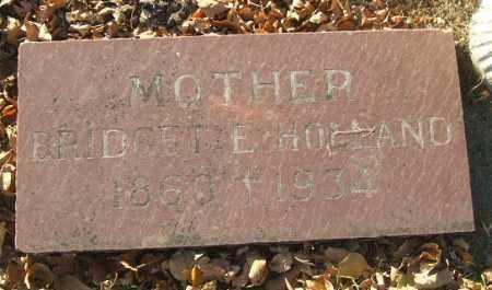 HOLLAND, BRIDGET E. - Minnehaha County, South Dakota | BRIDGET E. HOLLAND - South Dakota Gravestone Photos