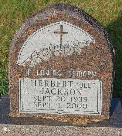 "JACKSON, HERBERT ""OLE"" - Minnehaha County, South Dakota | HERBERT ""OLE"" JACKSON - South Dakota Gravestone Photos"
