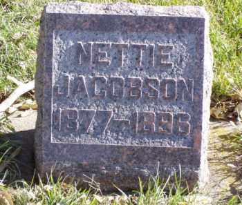 JACOBSON, NETTIE - Minnehaha County, South Dakota | NETTIE JACOBSON - South Dakota Gravestone Photos