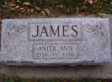 JAMES, ANITA ANN - Minnehaha County, South Dakota | ANITA ANN JAMES - South Dakota Gravestone Photos
