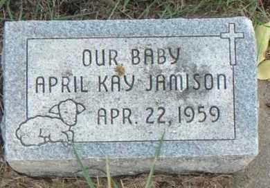 JAMISON, APRIL KAY - Minnehaha County, South Dakota | APRIL KAY JAMISON - South Dakota Gravestone Photos