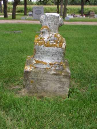 JANUARY, INFANT SON - Minnehaha County, South Dakota | INFANT SON JANUARY - South Dakota Gravestone Photos