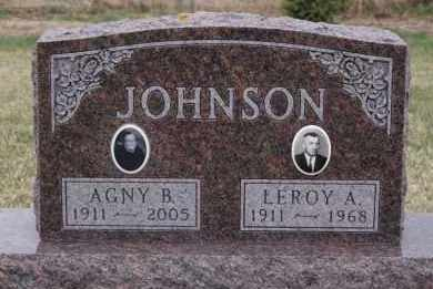 JOHNSON, AGNY B - Minnehaha County, South Dakota | AGNY B JOHNSON - South Dakota Gravestone Photos