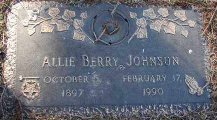 JOHNSON, ALLIE BERRY - Minnehaha County, South Dakota | ALLIE BERRY JOHNSON - South Dakota Gravestone Photos