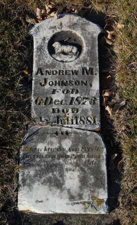 JOHNSON, ANDREW M. - Minnehaha County, South Dakota   ANDREW M. JOHNSON - South Dakota Gravestone Photos