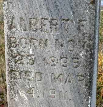 JOHNSON, ALBERT F. - Minnehaha County, South Dakota | ALBERT F. JOHNSON - South Dakota Gravestone Photos