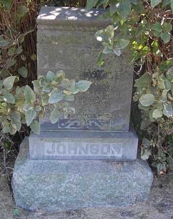 JOHNSON, ALFRED - Minnehaha County, South Dakota   ALFRED JOHNSON - South Dakota Gravestone Photos