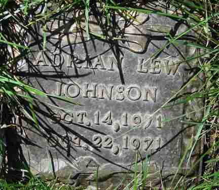 JOHNSON, ADRIAN LEW - Minnehaha County, South Dakota | ADRIAN LEW JOHNSON - South Dakota Gravestone Photos