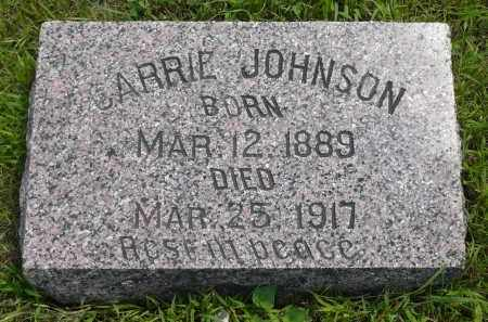 JOHNSON, CARRIE - Minnehaha County, South Dakota   CARRIE JOHNSON - South Dakota Gravestone Photos