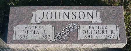 JOHNSON, DELIA J. - Minnehaha County, South Dakota | DELIA J. JOHNSON - South Dakota Gravestone Photos