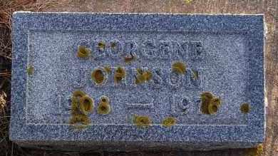 JOHNSON, GEORGENE - Minnehaha County, South Dakota | GEORGENE JOHNSON - South Dakota Gravestone Photos