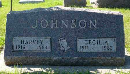 JOHNSON, CECILIA - Minnehaha County, South Dakota | CECILIA JOHNSON - South Dakota Gravestone Photos