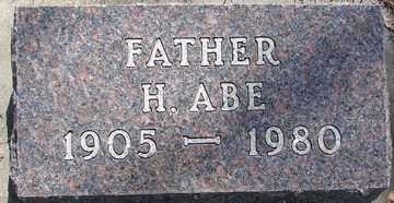 JOHNSON, H. ABE - Minnehaha County, South Dakota   H. ABE JOHNSON - South Dakota Gravestone Photos