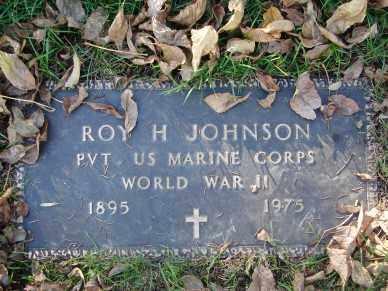 JOHNSON, ROY H. - Minnehaha County, South Dakota | ROY H. JOHNSON - South Dakota Gravestone Photos
