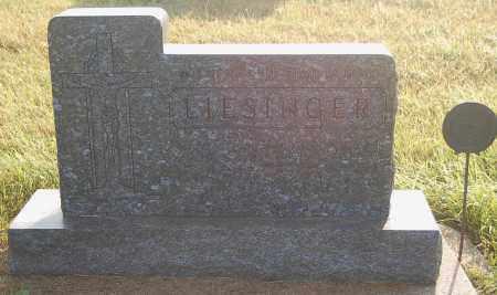 LIESINGER, GARY OSCAR - Minnehaha County, South Dakota   GARY OSCAR LIESINGER - South Dakota Gravestone Photos