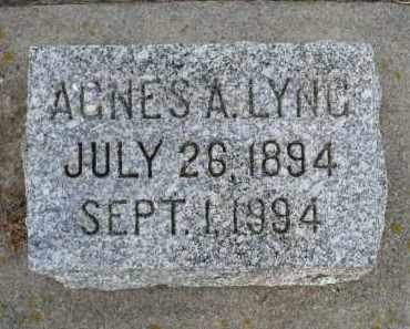 LYNG, AGNES ANNA - Minnehaha County, South Dakota | AGNES ANNA LYNG - South Dakota Gravestone Photos