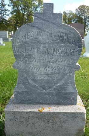 MCGINTY, JAMES W. - Minnehaha County, South Dakota | JAMES W. MCGINTY - South Dakota Gravestone Photos