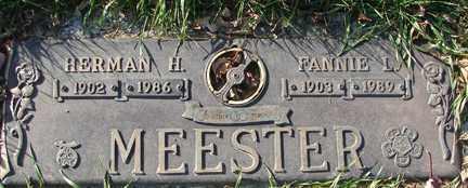 MEESTER, FANNIE LOUISE - Minnehaha County, South Dakota | FANNIE LOUISE MEESTER - South Dakota Gravestone Photos