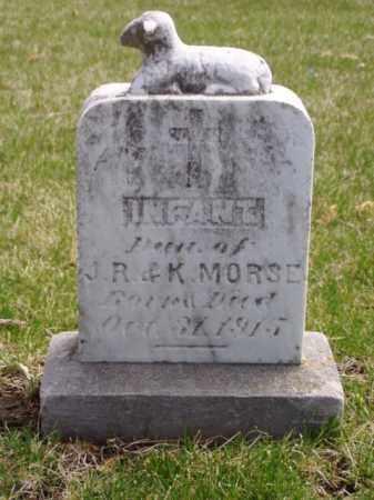 MORSE, INFANT - Minnehaha County, South Dakota   INFANT MORSE - South Dakota Gravestone Photos