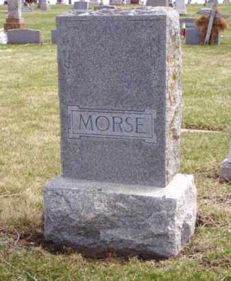 MORSE, INFANT SON - Minnehaha County, South Dakota | INFANT SON MORSE - South Dakota Gravestone Photos
