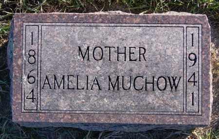 MUCHOW, AMELIA - Minnehaha County, South Dakota | AMELIA MUCHOW - South Dakota Gravestone Photos