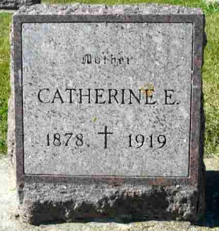 NAUGHTON, CATHERINE E. - Minnehaha County, South Dakota | CATHERINE E. NAUGHTON - South Dakota Gravestone Photos