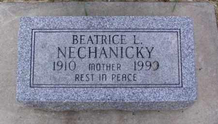 NECHANICKY, BEATRICE L. - Minnehaha County, South Dakota | BEATRICE L. NECHANICKY - South Dakota Gravestone Photos