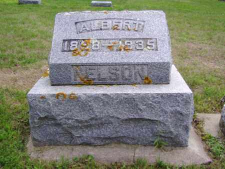 NELSON, ALBERT - Minnehaha County, South Dakota | ALBERT NELSON - South Dakota Gravestone Photos