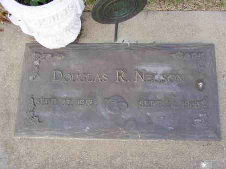NELSON, DOUGLAS RICHARD - Minnehaha County, South Dakota | DOUGLAS RICHARD NELSON - South Dakota Gravestone Photos