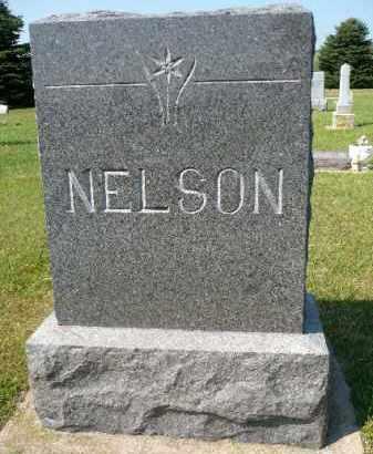 NELSON, FAMILY MAKER - Minnehaha County, South Dakota | FAMILY MAKER NELSON - South Dakota Gravestone Photos