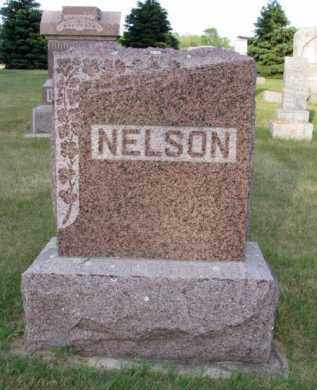 NELSON, HANS - Minnehaha County, South Dakota | HANS NELSON - South Dakota Gravestone Photos