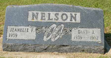 NELSON, DAVID J. - Minnehaha County, South Dakota | DAVID J. NELSON - South Dakota Gravestone Photos
