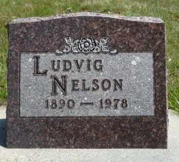 NELSON, LUDVIG - Minnehaha County, South Dakota   LUDVIG NELSON - South Dakota Gravestone Photos