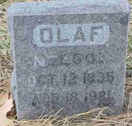 NELSON, OLAF - Minnehaha County, South Dakota   OLAF NELSON - South Dakota Gravestone Photos
