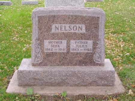 NELSON, JULIUS - Minnehaha County, South Dakota | JULIUS NELSON - South Dakota Gravestone Photos