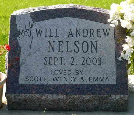 NELSON, WILL ANDREW - Minnehaha County, South Dakota | WILL ANDREW NELSON - South Dakota Gravestone Photos