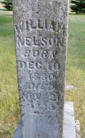 NELSON, WILLIAM - Minnehaha County, South Dakota | WILLIAM NELSON - South Dakota Gravestone Photos