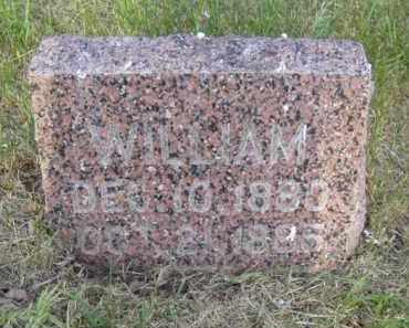 NELSON, WILLIAM - Minnehaha County, South Dakota | WILLIAM NELSON - South Dakota Gravestone Photos