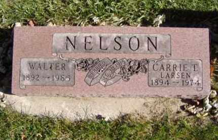 LARSEN NELSON, CARRIE T. - Minnehaha County, South Dakota | CARRIE T. LARSEN NELSON - South Dakota Gravestone Photos