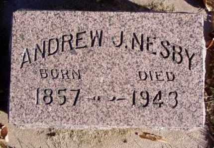 NESBY, ANDREW J. - Minnehaha County, South Dakota | ANDREW J. NESBY - South Dakota Gravestone Photos