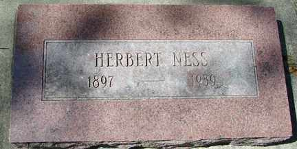 NESS, HERBERT - Minnehaha County, South Dakota | HERBERT NESS - South Dakota Gravestone Photos