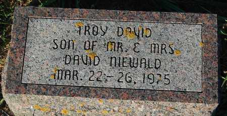 NIEWALD, TROY DAVID - Minnehaha County, South Dakota | TROY DAVID NIEWALD - South Dakota Gravestone Photos