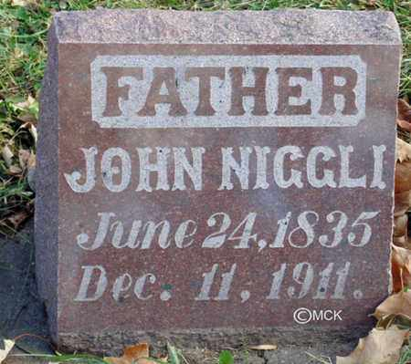 NIGGLI, JOHN - Minnehaha County, South Dakota | JOHN NIGGLI - South Dakota Gravestone Photos