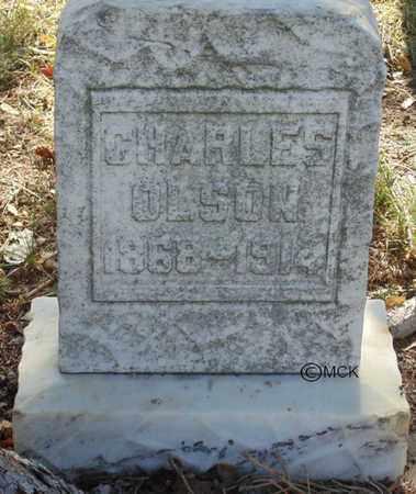 OLSON, CHARLES - Minnehaha County, South Dakota | CHARLES OLSON - South Dakota Gravestone Photos