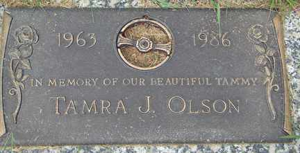 OLSON, TAMRA J. - Minnehaha County, South Dakota | TAMRA J. OLSON - South Dakota Gravestone Photos