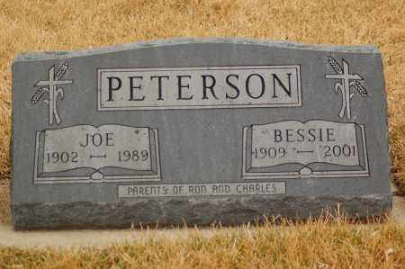 PETERSON, JOE - Minnehaha County, South Dakota | JOE PETERSON - South Dakota Gravestone Photos