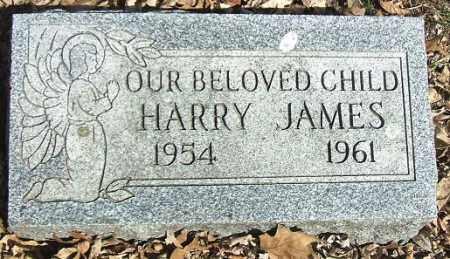 RUST, HARRY JAMES - Minnehaha County, South Dakota | HARRY JAMES RUST - South Dakota Gravestone Photos
