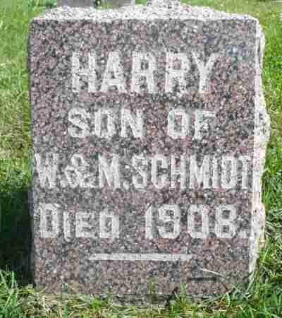 SCHMIDT, HARRY - Minnehaha County, South Dakota   HARRY SCHMIDT - South Dakota Gravestone Photos